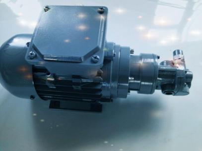 小型齿轮泵--切削液输送
