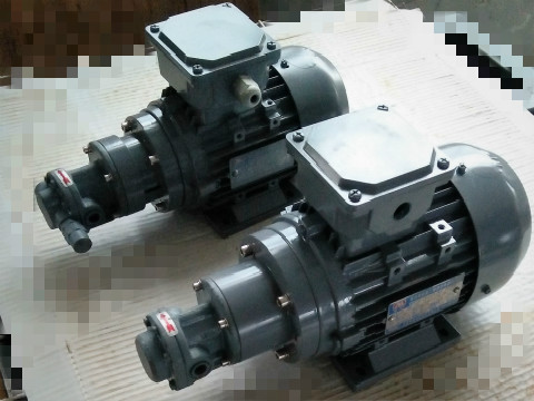 小型齿轮油泵
